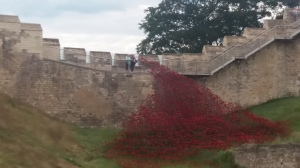 First World War poppy memorial, Lincoln Castle.