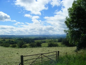 And this is what they saw today; sweet newly-cut hay and the Eden Valley in all its summer splendour.